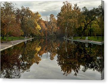 Sycamore Pool Reflection Canvas Print