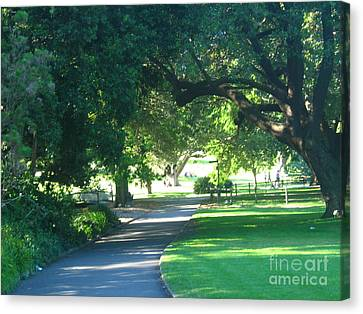 Canvas Print featuring the photograph Sydney Botanical Gardens Walk by Leanne Seymour