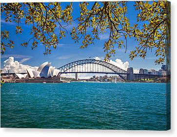 Sydney Harbour Skyline 2 Canvas Print by Az Jackson