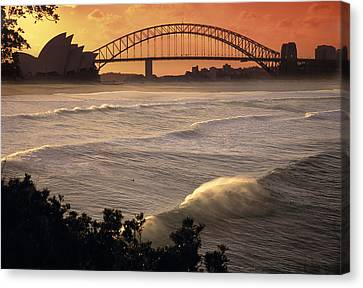 City-scapes Canvas Print - Sydney Surf Time by Sean Davey