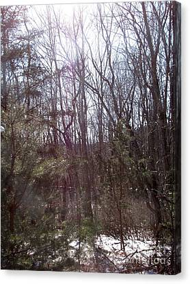 Canvas Print featuring the photograph Sylphs by Melissa Stoudt