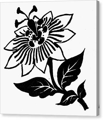 Symbol Passion Flower Canvas Print by Granger