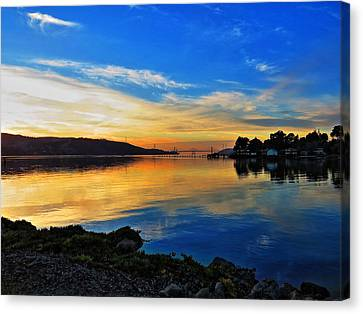 Symmetry Canvas Print by Brian Maloney