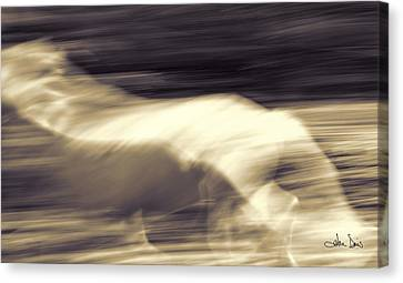 Canvas Print featuring the photograph Synchronicity by Joan Davis