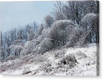 Syracuse Ice Storm Canvas Print
