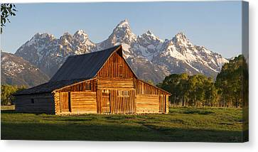 T. A. Moulton Barn And The Tetons Canvas Print by Aaron Spong