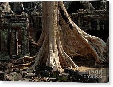 Ta Prohm Cambodia Canvas Print by Bob Christopher