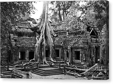 Ta Prohm Temple 01 Canvas Print by Rick Piper Photography