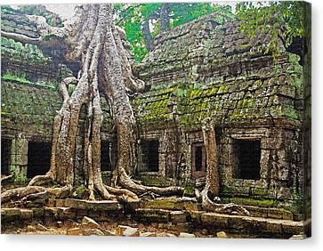 Ta Prohm Temple Ruins Canvas Print by Dennis Cox WorldViews