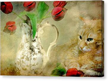 Tabby And Tulips Canvas Print by Diana Angstadt