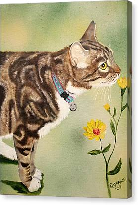 Tabby Canvas Print by Debbie LaFrance