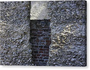 Tabby Wall With Red Brick Infill Canvas Print by Lynn Palmer