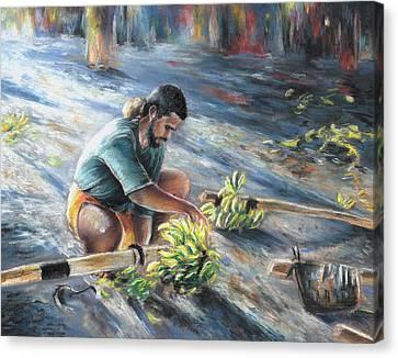 Tahitian Banana Carryer Canvas Print by Miki De Goodaboom