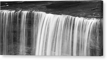 Tahquamenon Black And White Canvas Print by Dan Sproul