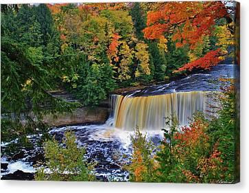 Tahquamenon Falls Canvas Print