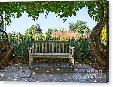 Take A Seat - Under A Pretty Gazebo Covered In Grape Vines And Leaves. Canvas Print