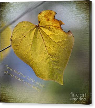 Take Another Little Piece Of My Heart Canvas Print by Linda Lees