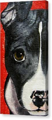 Canvas Print - Take Me Home by Debbie Finley