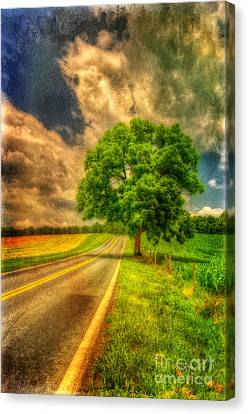 Country Lanes Canvas Print - Take Me Home by Lois Bryan