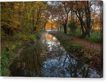 Take Me To The Pond Canvas Print