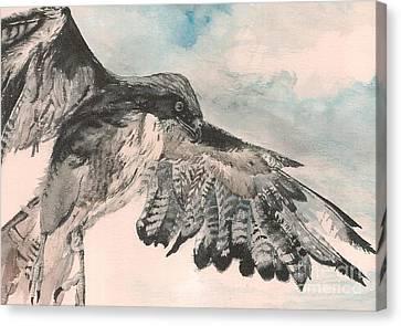 Take Wing Canvas Print by Christina Verdgeline