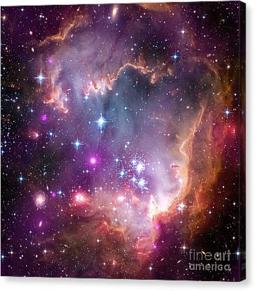 Canvas Print featuring the  Taken Under The Wing Of The Small Magellanic Cloud by Paul Fearn