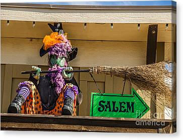 Canvas Print featuring the photograph Taking A Break by Sue Smith