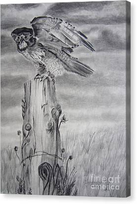 Canvas Print featuring the drawing Taking Flight by Laurianna Taylor