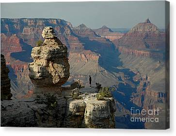 Canvas Print featuring the photograph Taking It All In by Nick  Boren
