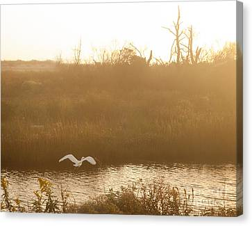 Canvas Print featuring the photograph Taking Off Into A Golden Sunrise by Carol Lynn Coronios