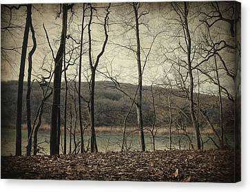 Tales From The Woods Canvas Print by Taylan Apukovska