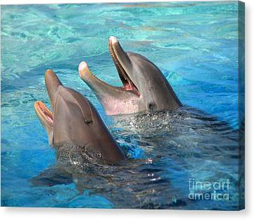 Canvas Print featuring the photograph Talking Dolphins by Kristine Merc