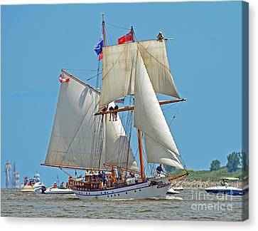 Canvas Print featuring the photograph Tall Ship Pathfinder by Rodney Campbell