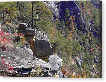 Tallulah Gorge State Park 4 Canvas Print by Cathy Lindsey