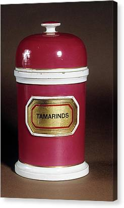 Tamarind Jar Canvas Print by Science Photo Library