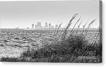 Tampa Across The Bay Canvas Print by Marvin Spates