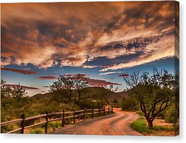 Canvas Print featuring the photograph Tangerine Dream by Beverly Parks