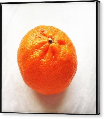 Bright Canvas Print - Tangerine by Matthias Hauser