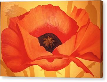 Tangerine Poppy Canvas Print by Linda Hiller