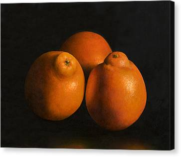 Tangerines Canvas Print by Anthony Enyedy