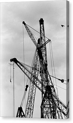 Tangled Crane Booms Canvas Print