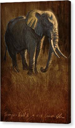 Elephants Canvas Print - Tarangire Bull 2 by Aaron Blaise