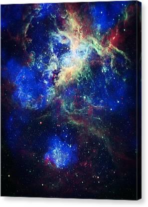 Tarantula Nebula 5 Canvas Print by Jennifer Rondinelli Reilly - Fine Art Photography