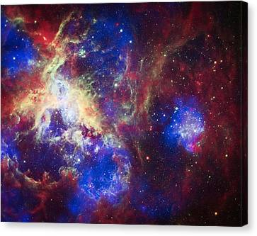 The Hubble Telescope Canvas Print - Tarantula Nebula 6  by Jennifer Rondinelli Reilly - Fine Art Photography