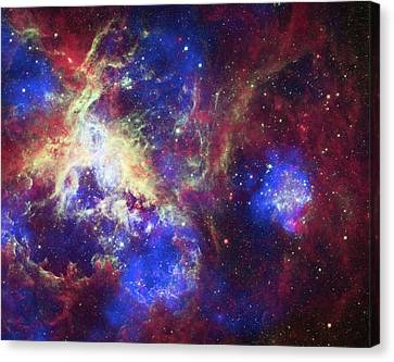 Tarantula Nebula Canvas Print by X-ray: Nasa/cxc/psu/l.townsley Et Al.; Optical: Nasa/stsci; Infrared: Nasa/jpl/psu/l.townsley Et Al.