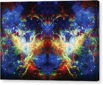 Tarantula Reflection 2 Canvas Print by Jennifer Rondinelli Reilly - Fine Art Photography