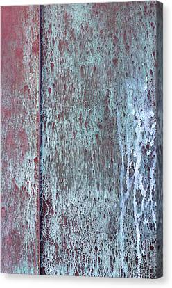 Canvas Print featuring the photograph Tarnished Tin by Heidi Smith