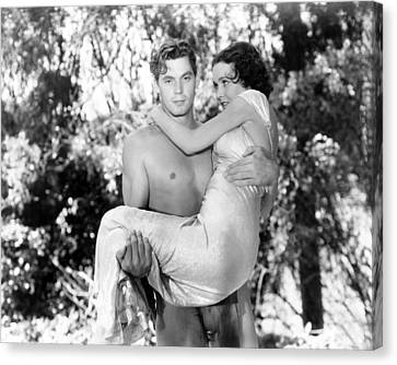Sullivan Canvas Print - Tarzan The Ape Man, Johnny Weissmuller by Everett