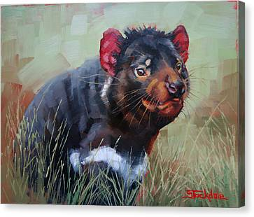 Tasmanian Devil Canvas Print by Margaret Stockdale