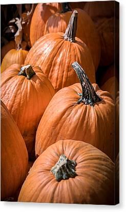 Taste Of Autumn Canvas Print by Karen Wiles